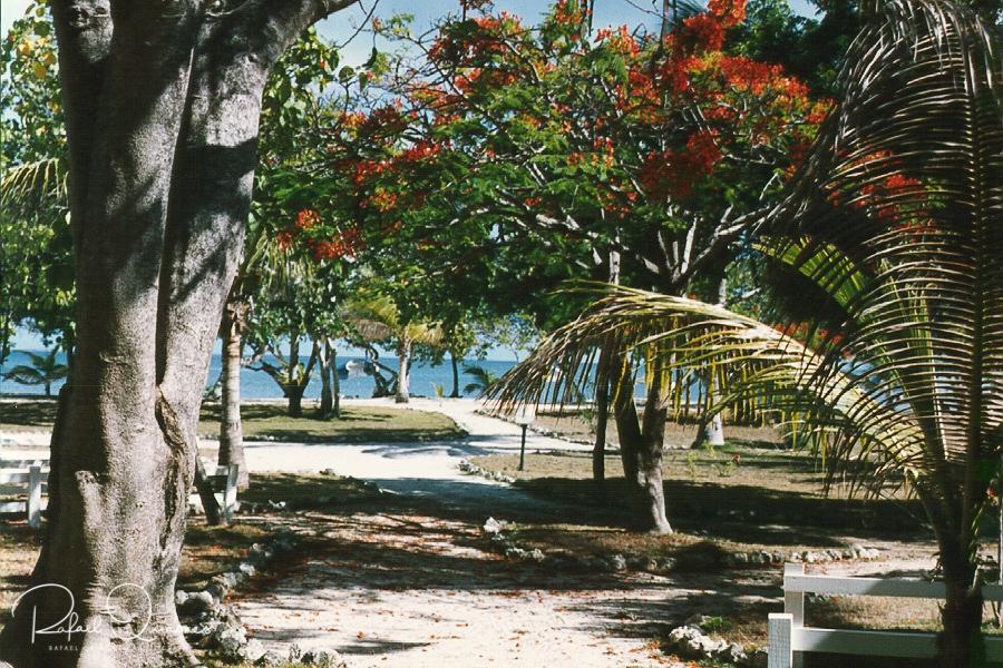 Anguilla--13