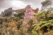20040510-Panoramica-013